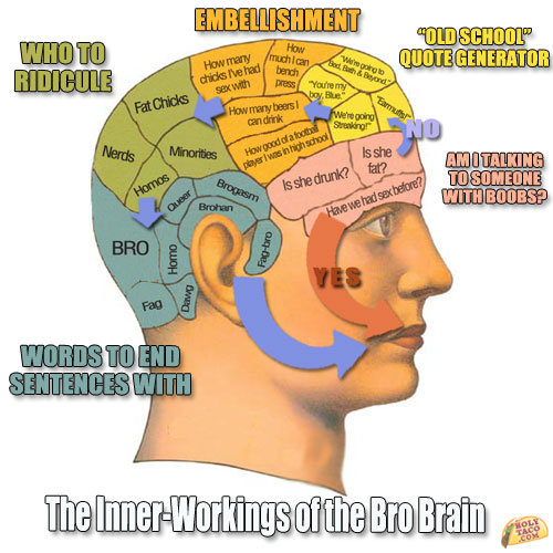 bro-brain-diagram1
